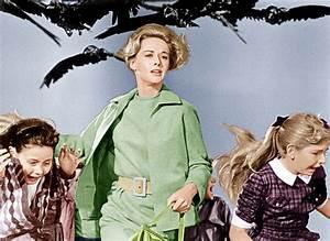 Film Review  The Birds  1963