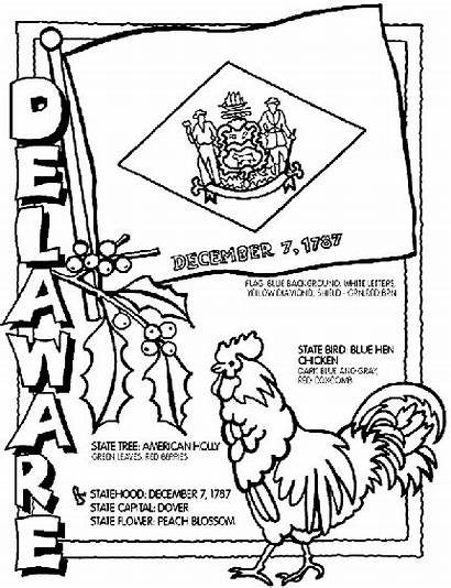 Delaware Coloring Crayola Pages State Flower Flag