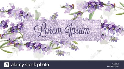 Lavender card watercolor Vector Flowers bouquet