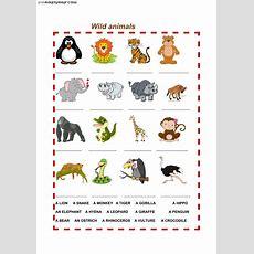 Wild Animals  Interactive Worksheet