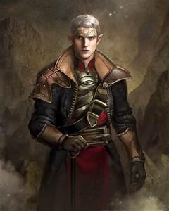 Elf Inquisitor by GerryArthur on DeviantArt