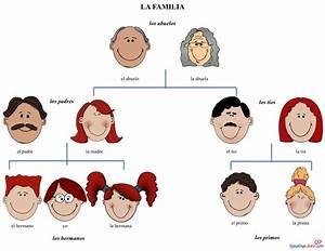 Basic Family Vocabulary In Spanish  Free Image Printable
