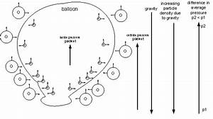 I U2019ve Always Wondered Why A Helium Balloon Goes Up