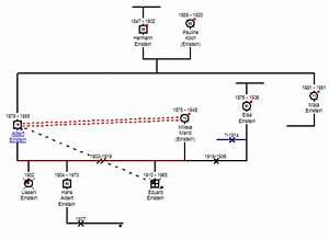 AutoArrange - GenoPro Help