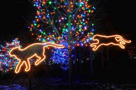 brookfield zoo lights 2017 weekend picks calling all lovers to cantigny