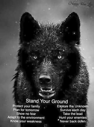 Pin by Sally Smith on Quotes | Wolf quotes, Lone wolf
