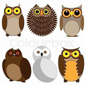 Set of different owls Vector illustration | Vector | Colourbox