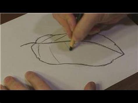 nature drawings   draw  banana leaf youtube