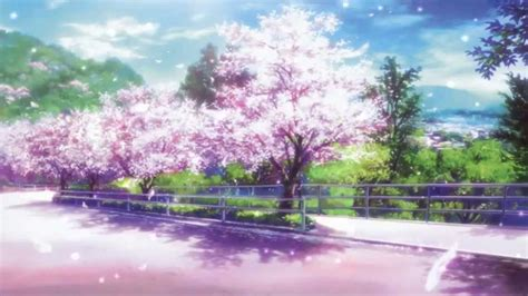 Anime Wallpaper Cherry Blossom by Cherry Blossom Wallpaper Anime Impre Media