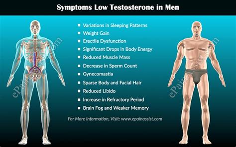 Testosterone Therapy A Growing Trend Among Men. Portland Photography School Best 800 Numbers. What Is The Best Hair Product For Damaged Hair. Information Technology In India. Online Store Website Template. Chimney Repair Portland Or Santa Cruz Movers. Budget Insurance Houston Detoxing From Heroin. College Degrees In Business What Is A C O S. Converting An Ira To A Roth Ira