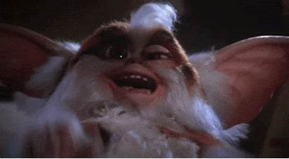 Laughing Crazy Gremlins Giphy Laugh Movies Gifs