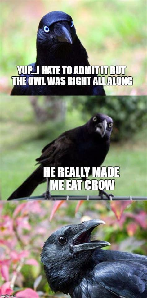 Crow Meme - bad pun crow imgflip