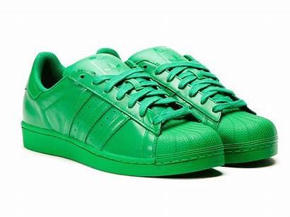 Verde Adidas Superstar Supercolor Pack Pharrell Williams