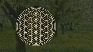 Blume Des Lebens Fensterbild : blume des lebens natursymphonie ~ Indierocktalk.com Haus und Dekorationen