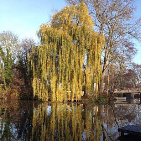 Schröders Garten, Luneburg  Omdömen Om Restauranger