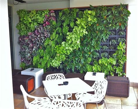 To Do A Vertical Garden by How To Create A Vertical Garden For An Apartment Hipages
