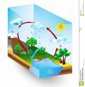 Water Cycle  Nature  Vector Diagram Stock Vector