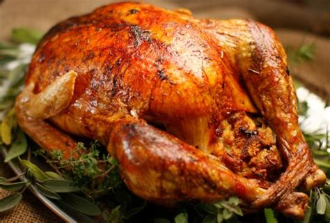 oven roasted turkey snow