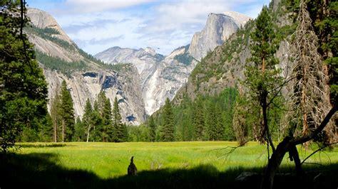 Yosemite National Park California Yaron Hadad