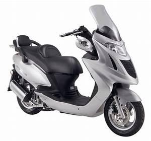 Kymco Grand Dink : kymco scooterverzekering goedkoopste bromfietsverzekering en goedkoopste scooterverzekering ~ Medecine-chirurgie-esthetiques.com Avis de Voitures