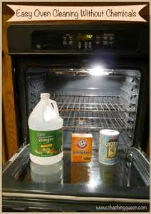 Non-Toxic Oven Cleaner