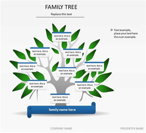 Family Tree Template For Mac by Free Family Tree Template For Mac Templates Station