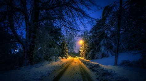 Snow Lights by Nature Landscape Winter Lantern Snow Trees