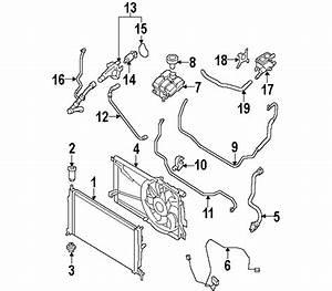 Mazda Z60115202b Genuino Oem Radiador Aislador Inferior