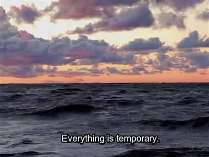 Everything Temporary Ocean Weird Seen Wide Web