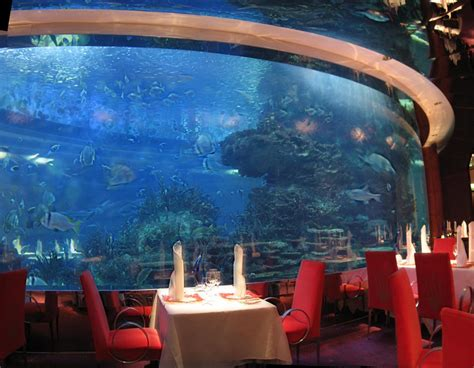 aquarium hotel in dubai where to travel burj al arab in dubai