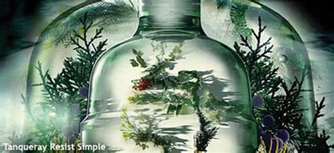 resist simple tanqueray gins  global campaign