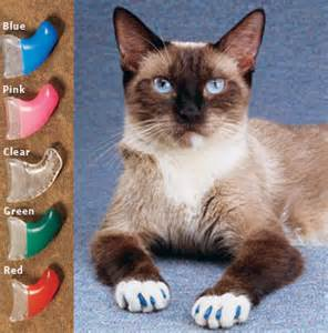 how to declaw a cat declawing alternatives