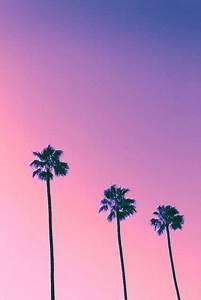 pink sky on Tumblr