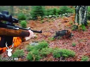You Tube Chasse : chasse aux sangliers en battue au poste chasse hd youtube ~ Medecine-chirurgie-esthetiques.com Avis de Voitures