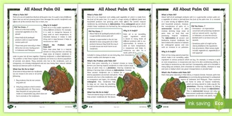 * New * Lks2 Palm Oil Differentiated Reading Comprehension