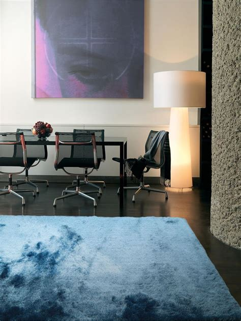 shaggy rugs images  pinterest carpets cheap