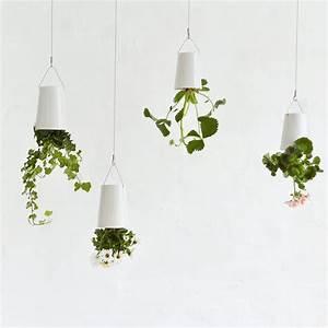 Boskke Sky Planter : mildred co a new zealand wedding gift registry sky planter ~ Orissabook.com Haus und Dekorationen