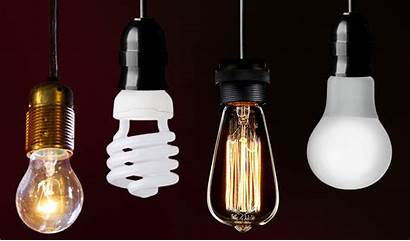 Bulbs Various Kinds Lamps Function Functions Energy