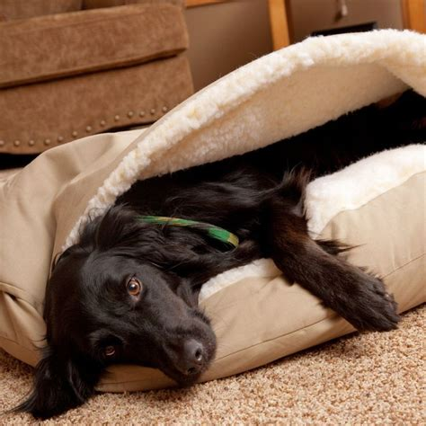 Snoozer Cozy Cave Pet Bed by 17 Best Ideas About Cave On Beds