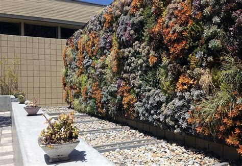 Vertical Garden Succulent Wall Panels by 55 Best Vertical Garden Ideas Planters Diy Kits