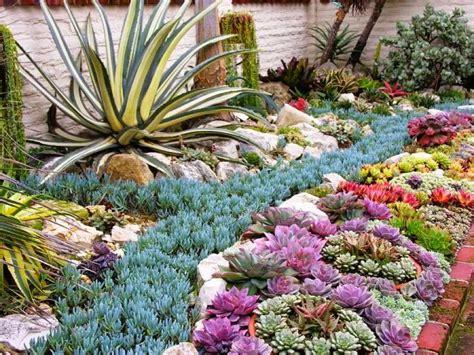 succulent flower bed 20 ideas para decorar un lindo jard 237 n con suculentas