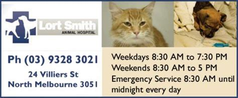 lort smith animal hospital vic vet general vets