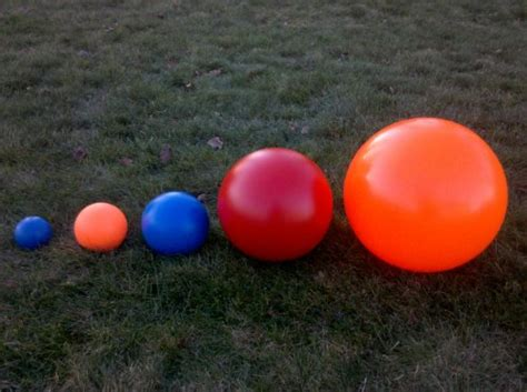virtually indestructible  ball  dogs