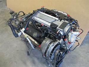 97 Camaro Firebird Lt1 V8 Engine  U0026 T56 Transmission
