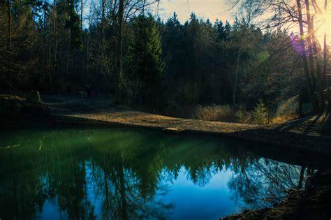 forest pond strangeground