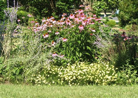 garden perennial plants views from the garden design a perennial flower bed for blooms spring to fall