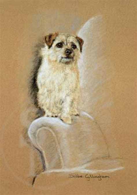 Armchair Warrior by Armchair Warrior Norfolk Terrier Limited Edition Print By
