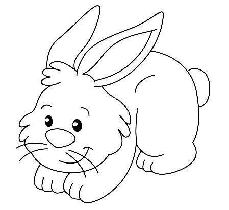 Dibujo De Conejos Dibujo Para Colorear De Conejos