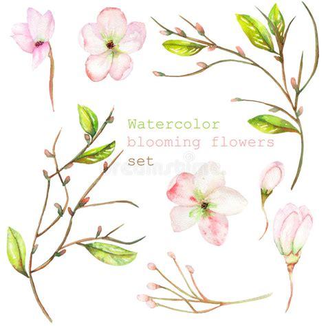 rami di fiori rami decorativi per floreali stunning wall stickers ramo