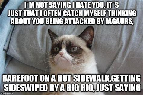 Where Are You Meme Grumpy Cat Bed Meme Imgflip